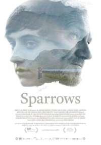 8 Sparrows